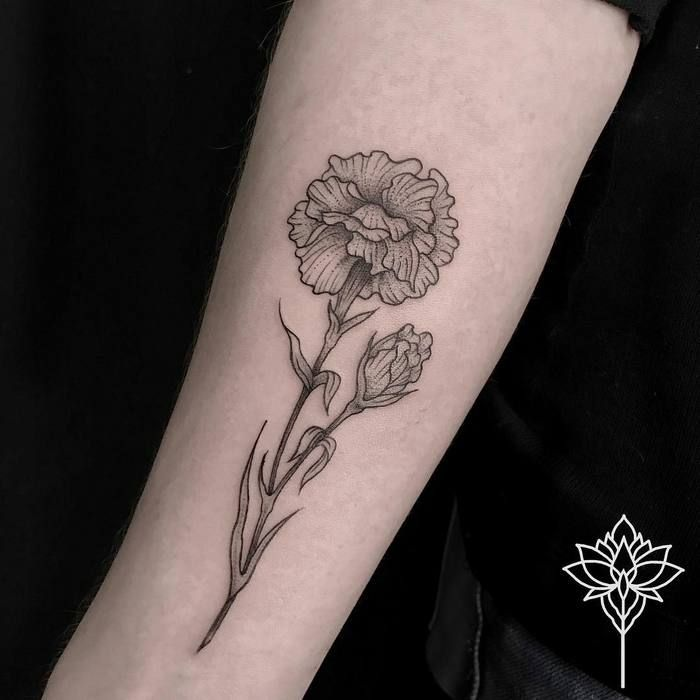 Dotwork Carnations by Miriam Andrea
