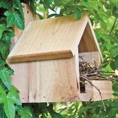 Cardinal Nest Box - cardinals don't nest in enclosed boxes audobonworkshop.com
