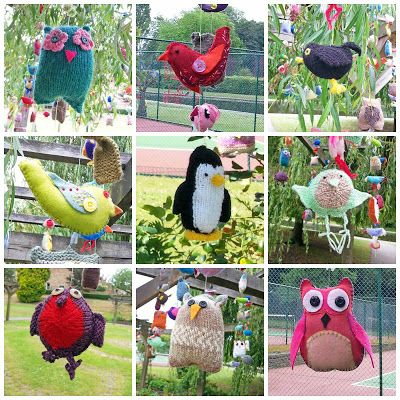 A selection of Brilliant Birds