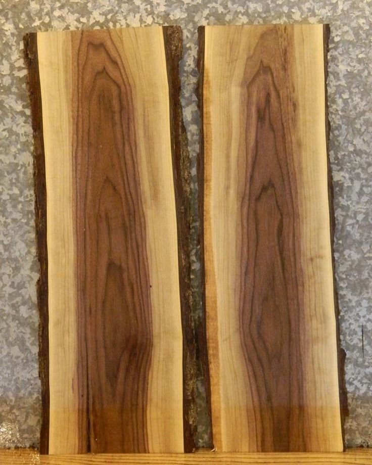 $155 – Black Walnut live edge slab. 35″ x 13″  I want to use for shelves above t…  – most beautiful shelves
