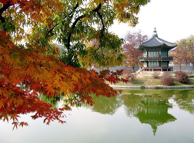 Exploring the old and the new in Seoul, South Korea in autumn with family