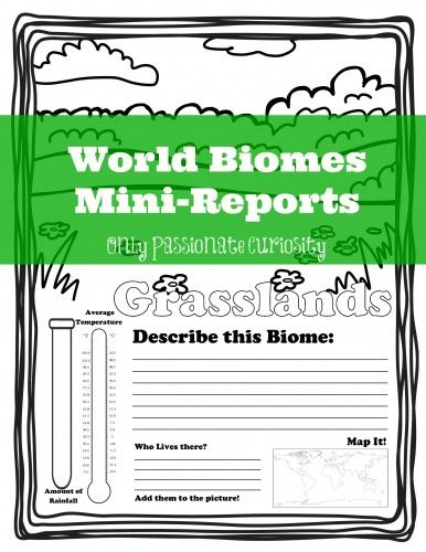Learning About World Biomes - Cute Mini-Reports for K-3rd graders. Have your child do the research, and then write in information about the biome, temperature, rainfall, map the location and draw the animals that live there.