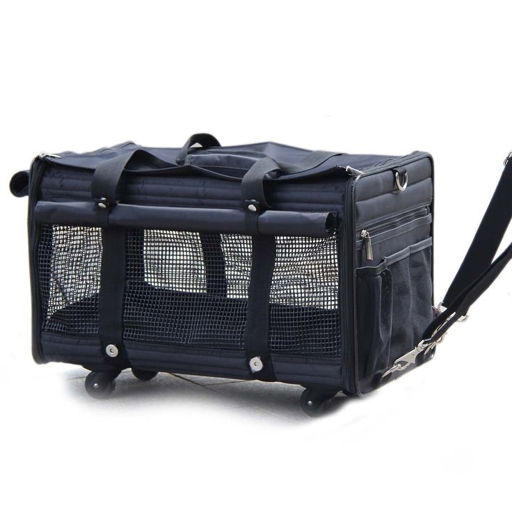 Deluxe Black Soft Sided cat Carrier on Wheels Dog Carrier Bag Airport Cat Carrier by Yotache > Wow! I love this. Check it out now! : Cat Cages, Carrier and Strollers