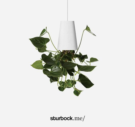 Sky Planter: https://sturbock.me/set/vaspfla/#51473