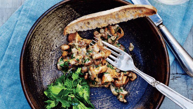 Svampestuvning på ristet brød med krydderurtesalt