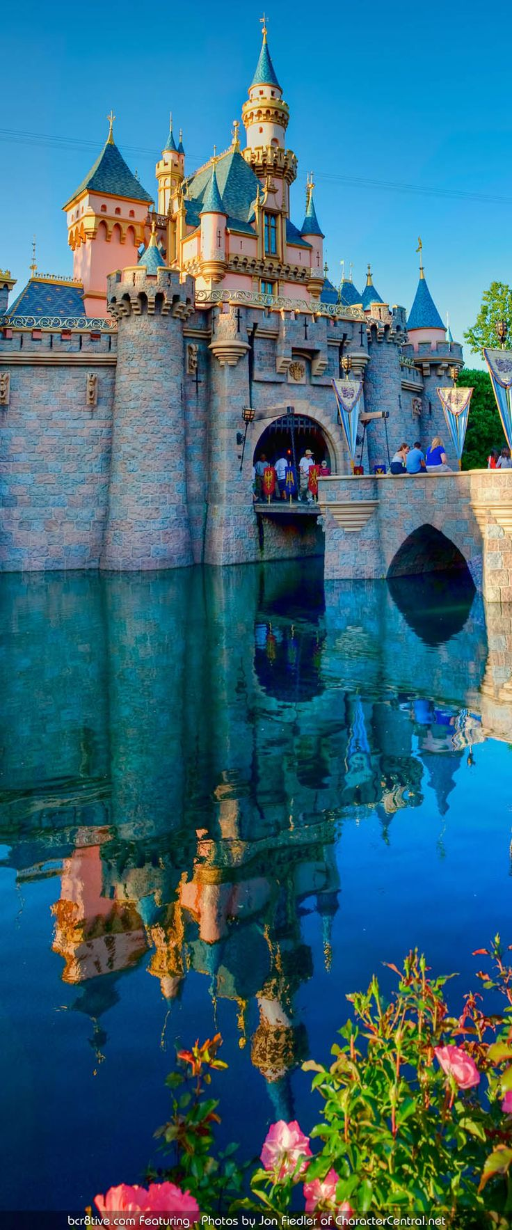 I'll Never Be Too Old for Disney - Disneyland Park, Disneyland Resort, Anaheim, CA