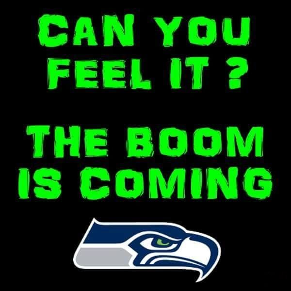 9cb86d147d0f610d2073d6d44b5c296b seahawks memes seahawks gear 390 best seahawks images on pinterest seattle seahawks, seahawks,Seahawks Game Day Meme