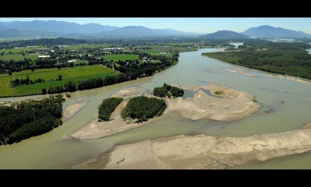 Fraser River, Chilliwack BC