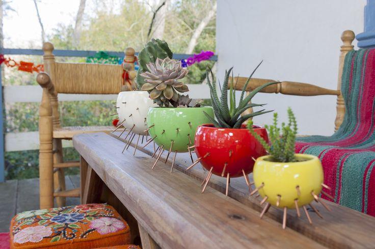 Maceta Cactus mediana chica.   curadoras   Elo7