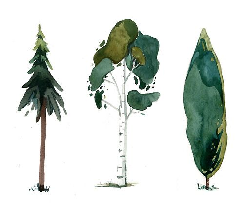 Olga ★ || CHARACTER DESIGN REFERENCES | キャラクターデザイン • #watercolor #tree