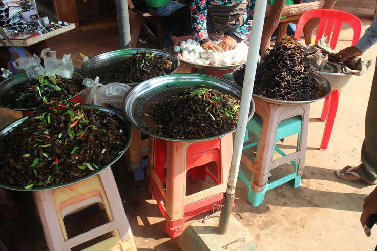 Insect market in Skuon - Spider Ville - Cambodia
