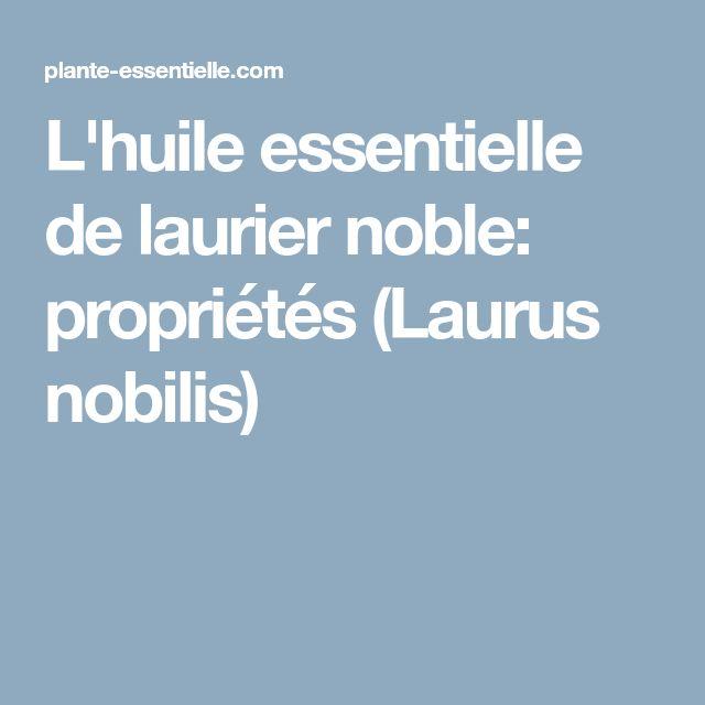 L'huile essentielle de laurier noble: propriétés (Laurus nobilis)