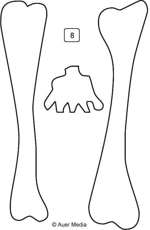 squelette anatomie corps humain os halloween.
