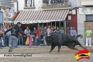 torodigital: Punto final a las fiestas de San Antoni 2016 en M...