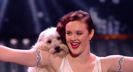 Dancing Dog Pudsey Makes BGT Final - http://worldog.com/dancing-dog-pudsey-makes-bgt-final