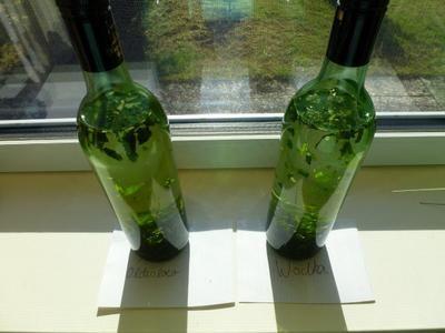 Rezept: Pfefferminz-Zitronenmelisse-Likör