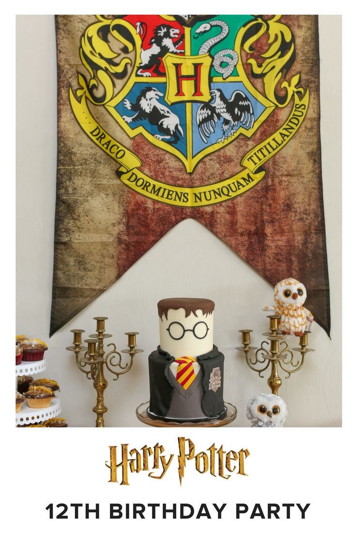 Wesley S Colorful Harry Potter Themed Birthday Party Love Inc Mag Harry Potter Theme Party Harry Potter Birthday Invitations Harry Potter Birthday