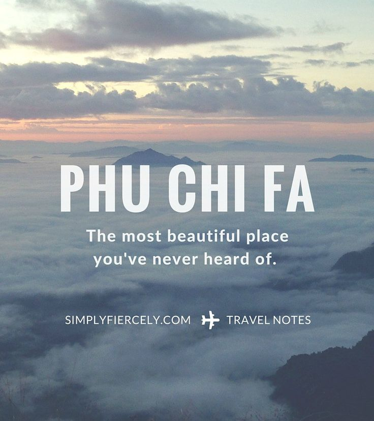 Phu Chi Fa is a mountain overlooking the Laos border, 2 hours from Chiang Rai, Thailand. It's magical at sunrise and should be on every travel bucket list!