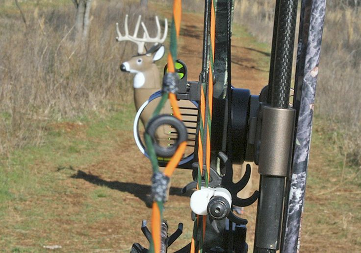 Goof-Proof Tips For Sighting-In Your Bow