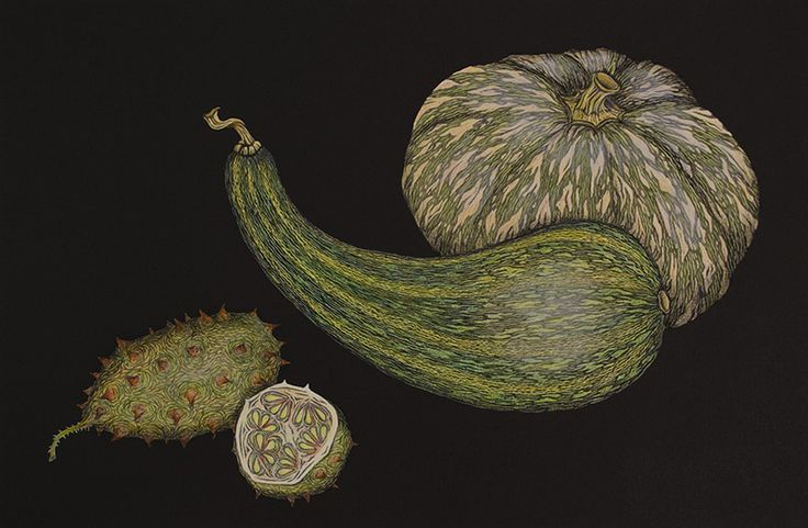 FW14196 Still life with Cucurbits ed 1/3 2013  hand-coloured lino print on BFK Rives Tan paper  30x45 cm