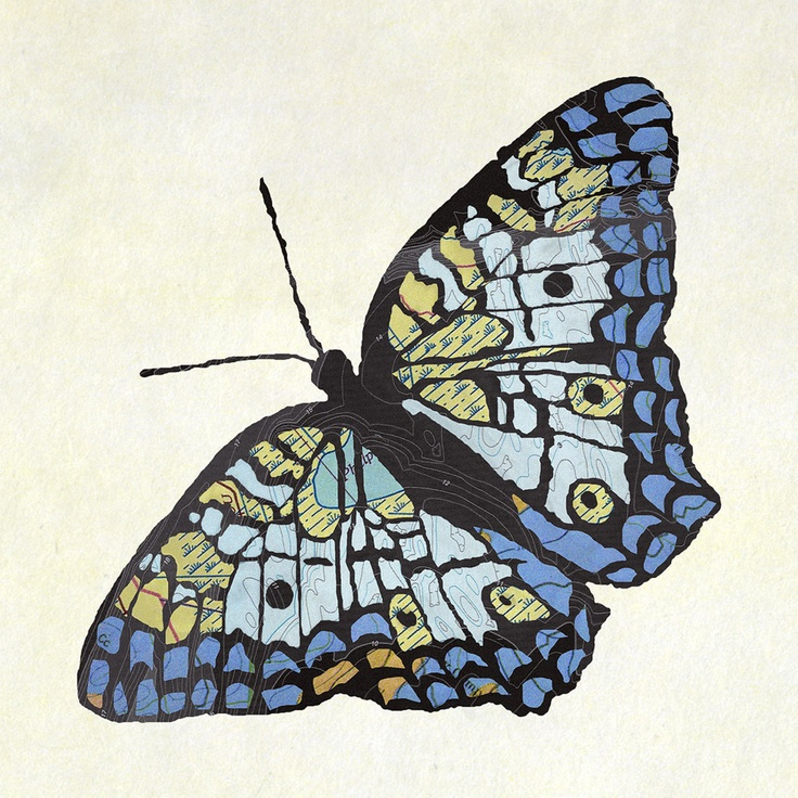 White Peacock   by Jason LaFerrera;   This white peacock butterfly print is formed from a compilation of old maps that the artist has digitally manipulated into a curiously detailed silhouette. Streets, train routes, and geographic landmarks like forests and lakes become a palette of colors and textures that bring depth, dimension, and character to the flattened form.