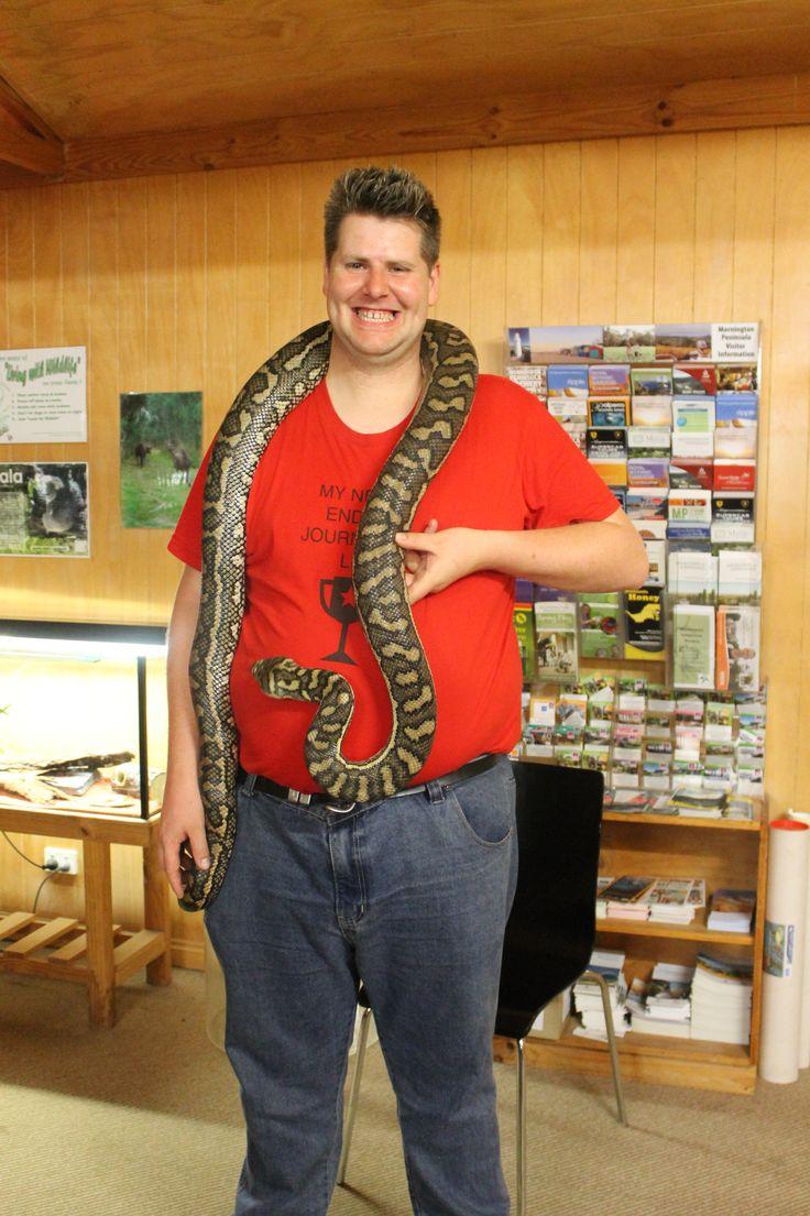 Animal Encounter - Coastal Python