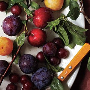 Plum Types | Plum Varieties | From tart to tropical, you're bound to find a plum variety that will pique your taste buds.