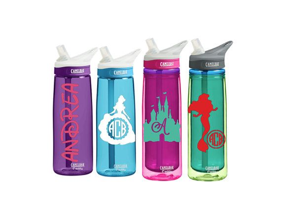 Disney World Water Bottle  Monogram CamelBak 0.75 L Eddy or 0.6 L by SmittenInAMitten
