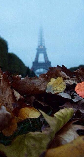 Credit photo : @jb_grenouille #Fall #Paris #France