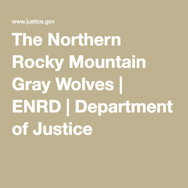 The Northern Rocky Mountain Gray Wolves   ENRD   Department of Justice