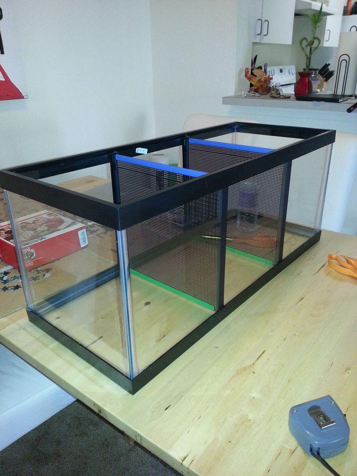 Best 25 betta tank ideas on pinterest betta aquarium for Cat proof fish tank