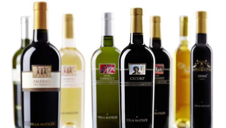 Oggi l'azienda Villa Matilde è condotta dalla seconda e terza generazione della famiglia Avallone. L´azienda presidia i principali mercati nazionali e internazionali, è nota alla critica e agli appassionati, ed ha la capacità di produrre vini di qualità anche con attenzione alla sostenibilità e alla tutela dell´Ambiente.