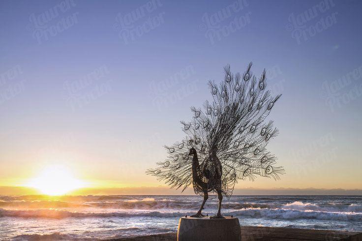 Sculptures by the Sea at Sunrise - Bondi, Sydney