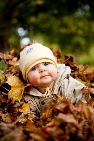 A fall baby portrait... Chubby cheeks and crisp leaves, plus little beany = cute, cute, cute.