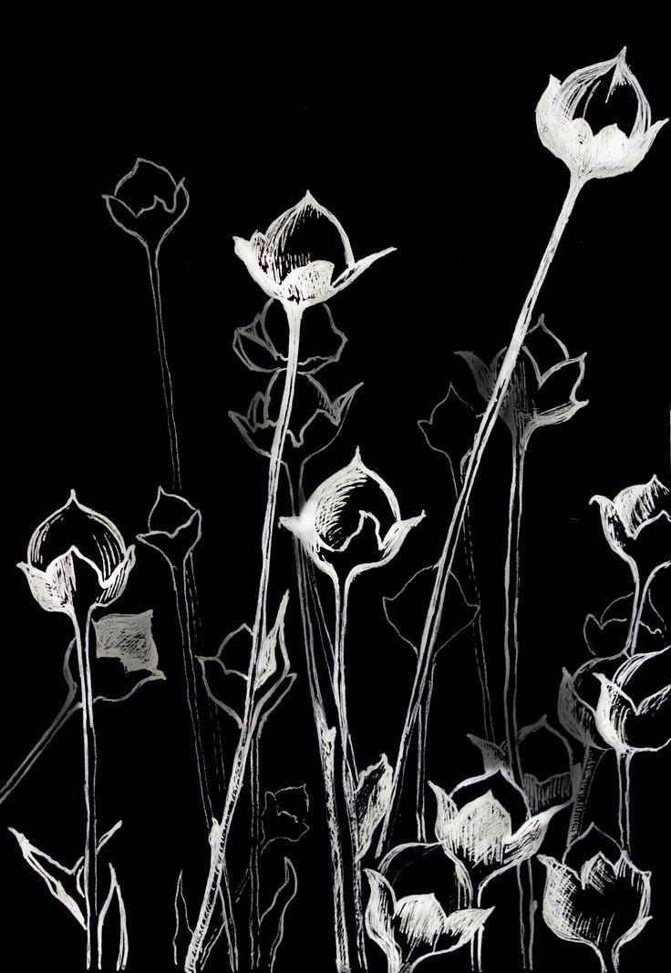 #art #drawing #blackcardboard #ink #whiteink #print #flowers #interior #wallpaper #обои #принт #цветы #черный картон #картон #идеи #дляинтерьера #чернила #картон #графика