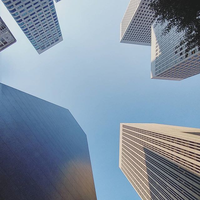 Financial district: A different kind of San Francisco. #California #sanfrancisco #city #businessdistrict #skycrapers #streets #usa #America #usatravel #travel #travelling #traveling #adventure #roadtrip #wanderlust #holiday #vacation #vacanze #vacanza #viaggio #Loma #matka #matkailu…