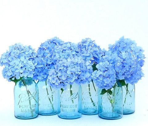 blue hydrangeas in vintage blue mason jars banquet. Black Bedroom Furniture Sets. Home Design Ideas