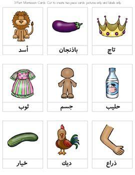 Arabic Alphabet Montessori 3-Part Cards