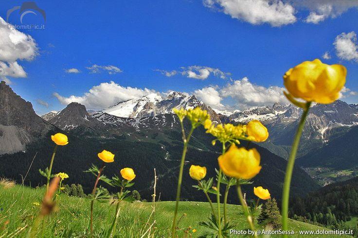 Landscape #Dolomites Passo Sella #ValdiFassa