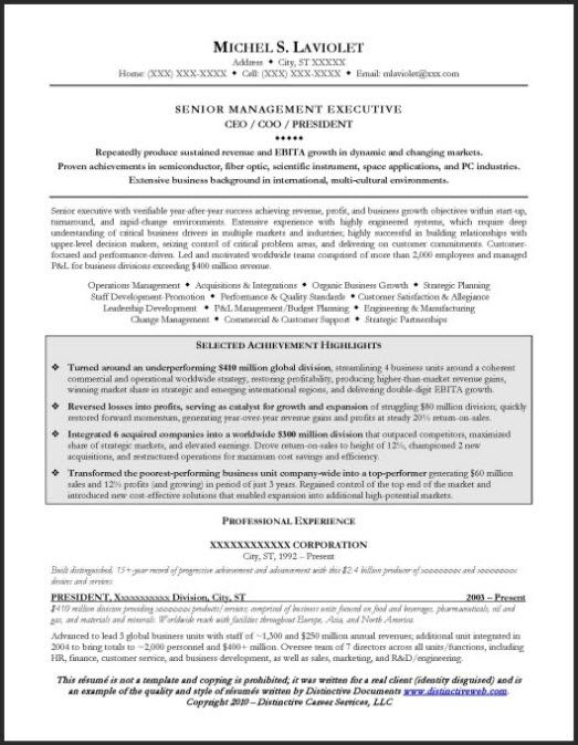 ceo resume example page 1