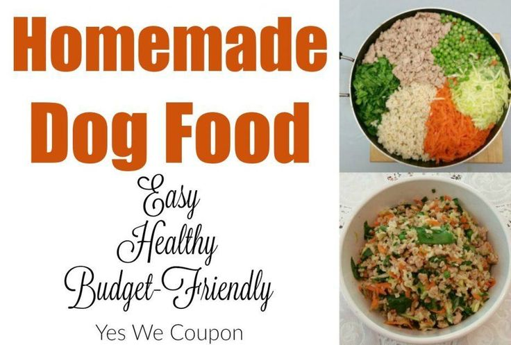 Share Tweet Pin Mail Making a great homemade dog food recipe is an excellent way to save money when your pets need specialty foods. ...