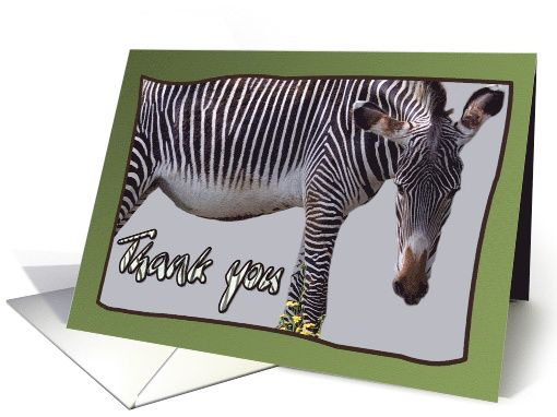 Zebra and zebra print -Thank you card on green background... by Steppeland