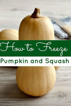How to Freeze Pumpkin & Squash - Don't let your left over pumpkin go to waste! Learn how to freeze pumpkin and squash to preserve it!