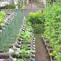 What an Ingenious Way of Gardening! Recycling and Maximizing the Garden Space.You Have to Check Out this Video!