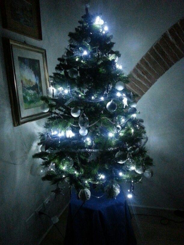 Il mio albero....acceso