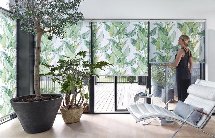 Med rullegardinet kan du få en fantastisk effekt med store flader af grafiske input til din bolig. Brug designet Leaves til at bringe den botaniske trend ind i din bolig. Designet fås både i den cool grønne farve og en mere urban grå variant. #rullegardiner #inspiration #bolig #indretning #boligindretning #gardiner #gardininspiration #stue #botanik #botanic #luxaflex #luxaflexdk