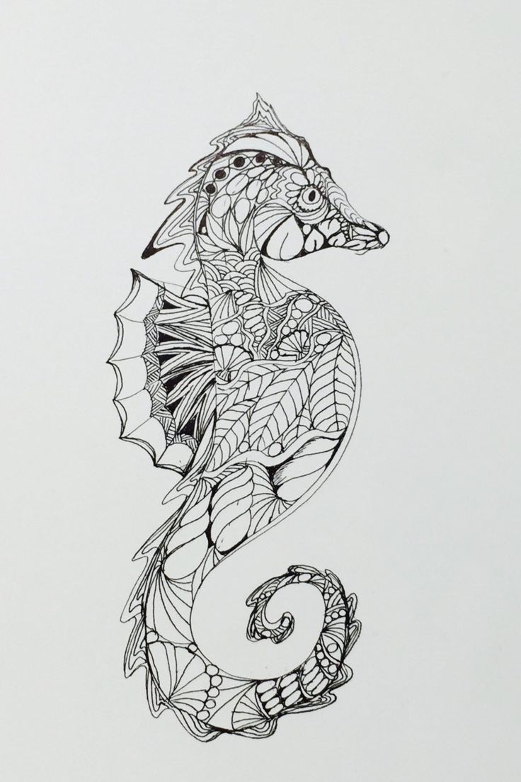 Zentangle seahorseseahorse ink drawing wall art, fish coloring pages