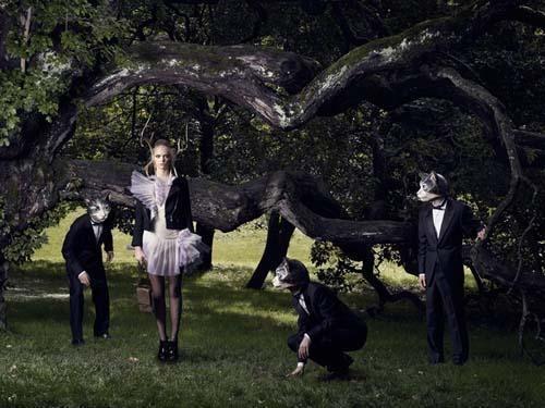 """""""Cat's Garden"""" by Marc Thirouin"""