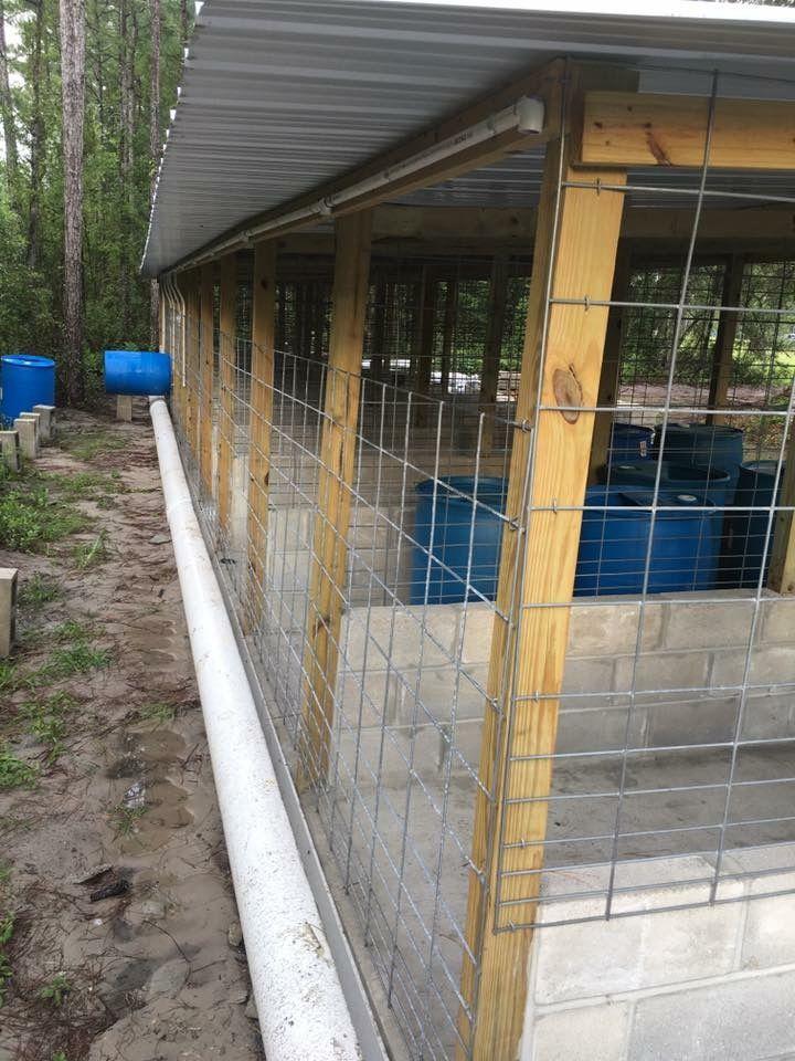 Dog kennels pets pinterest dog dog kennel designs for Carport dog kennels