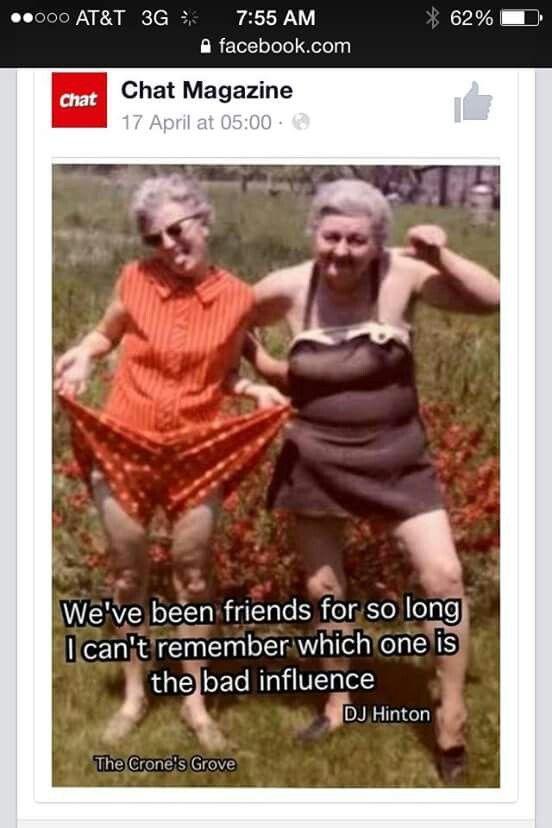 39 best funny birthday qoutes images on pinterest jokes